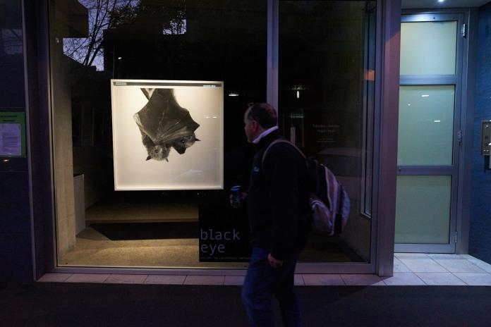 Urban Lair Exhibition images