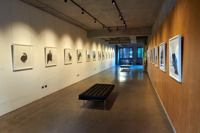 Black Eye Gallery, Sydney